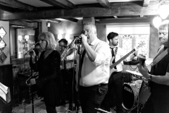 Brass Monkees Wedding Band Singer 4